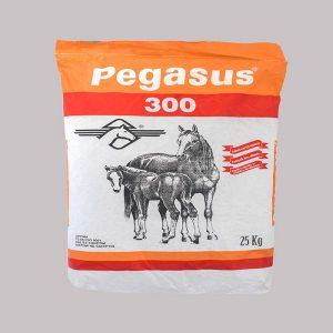 Pegasus 300